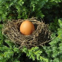 egg-1600890__340